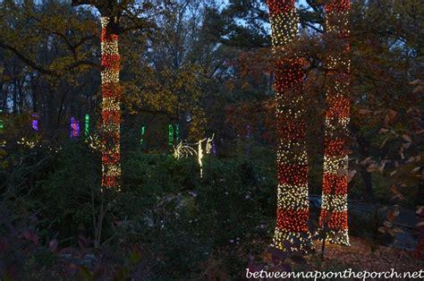 Atlanta Botanical Gardens Promo Code Coupons Atlanta Botanical Garden Images
