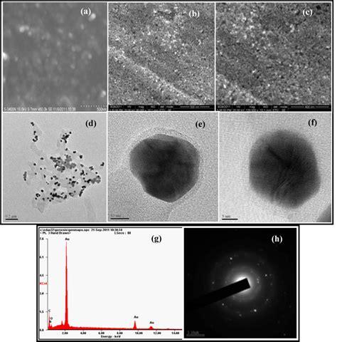 pattern gold nanoparticles utilization of the terrestrial weed guduchi tinospora