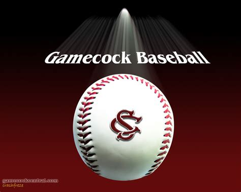girly gamecock wallpaper gamecock baseball graphics pictures images for myspace