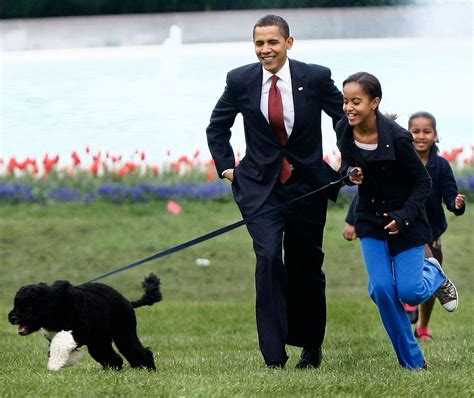 white house dogs white house bo 171 cbs new york