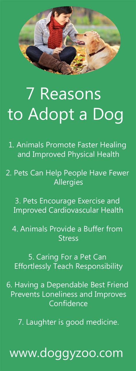Top 10 Reasons To Adopt A by 7 Reasons To Adopt A Doggyzoo Comdoggyzoo