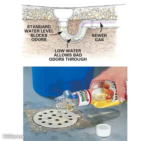 smells from bathroom drains how to fix smelly drains universalcouncil info