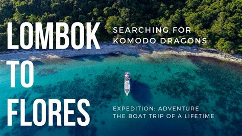 boat trip lombok to flores boat lombok to flores the expedition of a lifetime