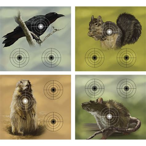 printable varmint targets crosman varmint targets 20 ct airgun depot