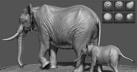 zbrush elephant tutorial sculpting realistic animals by stavros fylladitis