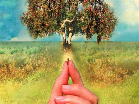 eksegese hidup  pedalaman yoh   hidup