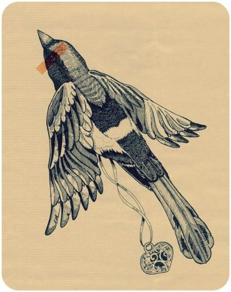 magpie tattoo design flying bird illustration illustrated birds