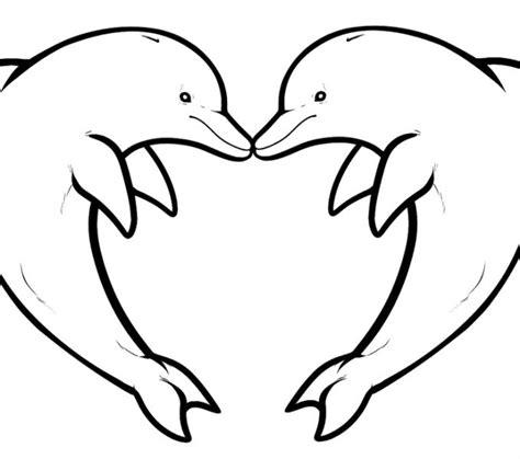 dolphin pictures to color dolphin pictures to color dimmi metashort co