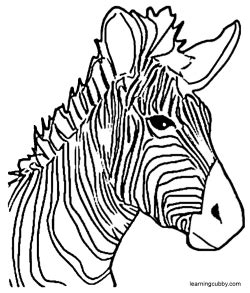 zebra face coloring page best photos of zebra head coloring pages zebra head