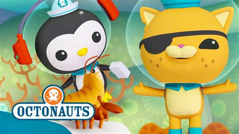 octonauts action packed sea mission 4