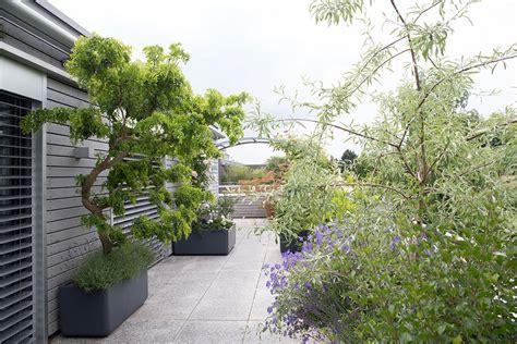 terrassengestaltung mit pflanzen terrassengestaltung raschle blumen pflanzen garten