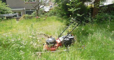 overgrown garden overgrown garden kennedy garden care