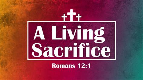 Sacrifice Of A Witch sacrifice 2016 witch subtitles eng hd