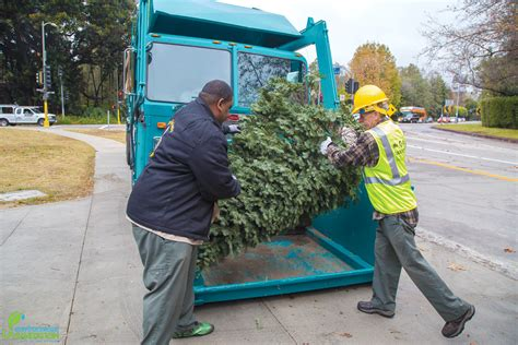 los angeles tree recycling 28 images los angeles tree