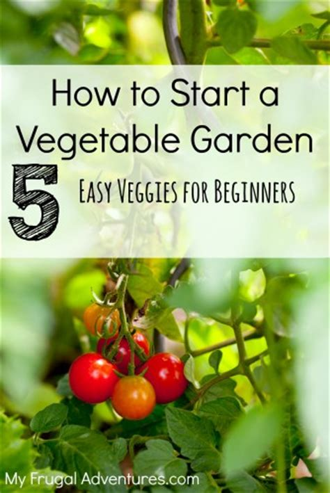 how to start a small vegetable garden in your backyard my frugal adventures simple recipes diy and inspiration