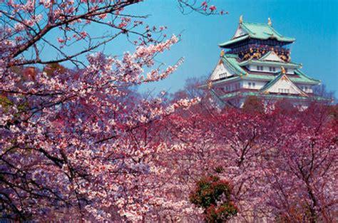imagenes de foto japon fotos de jap 243 n im 225 genes y fotograf 237 as