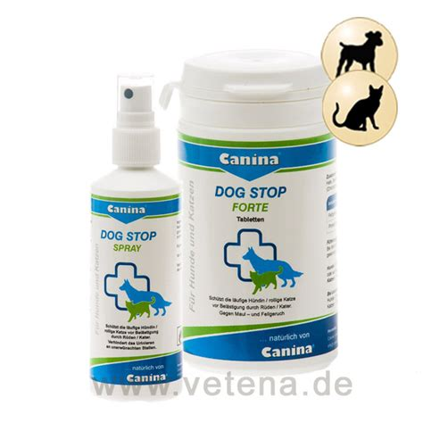 spray to prevent dogs from peeing in the house spray to prevent dogs from in the house 28 images pet cat and prevent repellent