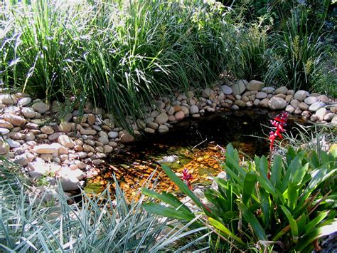 harmony in landscape design avalon palm beach bayview garden maintenance landscapers sydney