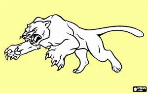 free puma coloring pages