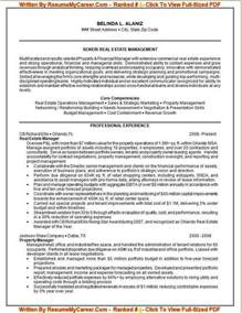 professional resume free job cv example