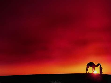 Pose 6 Camel Pose Ustrasana Melanie Yoga Desert Powerpoint Background