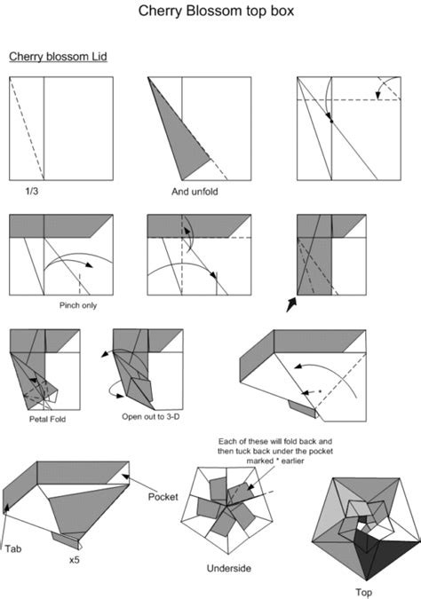 Free Origami Diagrams - free coloring pages origami box 101
