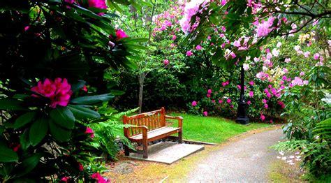 flores de jardin qu 233 es un jard 237 n de flores y c 243 mo puedes formar uno en casa