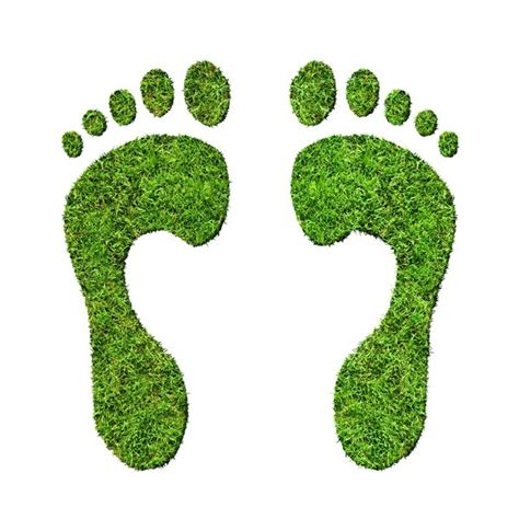 Teh Eco eco friendly shoes going green with your footwear
