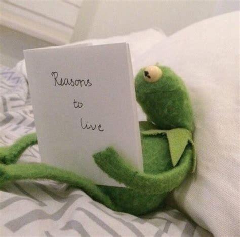 sad kermit images  pinterest frogs dankest