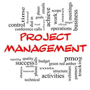 pmo setup project management office set up