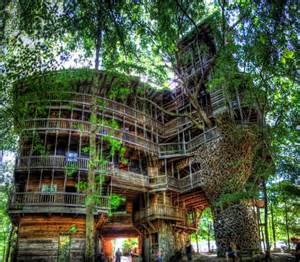 coolest treehouse in the world world of mysteries best treehouse ever