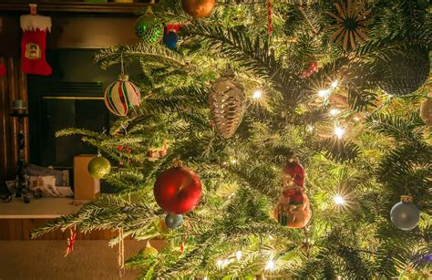 christmas tree by the fire place free stock photo public