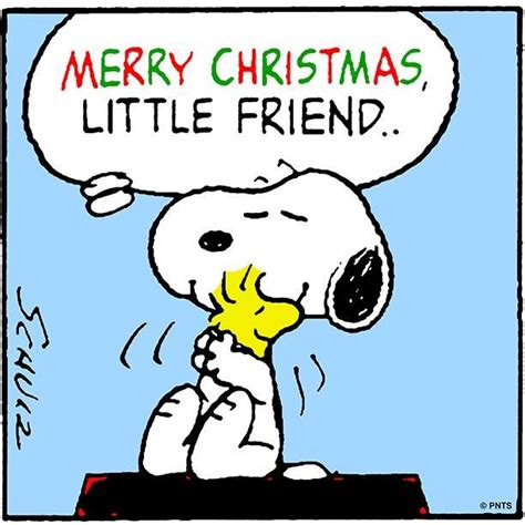peanuts snoopy  woodstock  friends holidays snoopy snoopy christmas peanuts snoopy