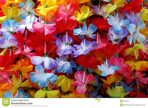 hawaii colors colorful leis stock image image of flower paradise