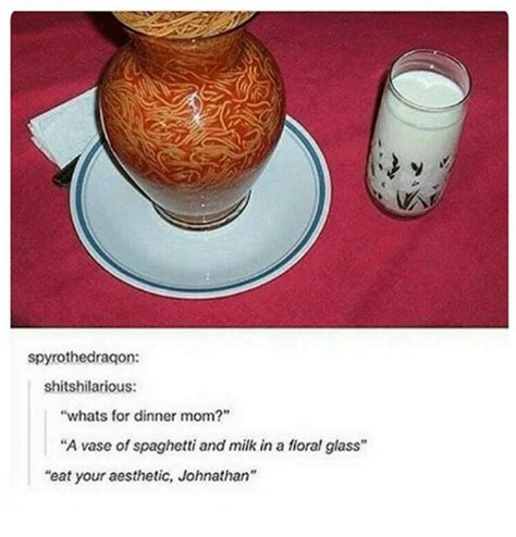 Whats A Vase by Spyrothedragon Shitshilarious Whats For Dinner A Vase