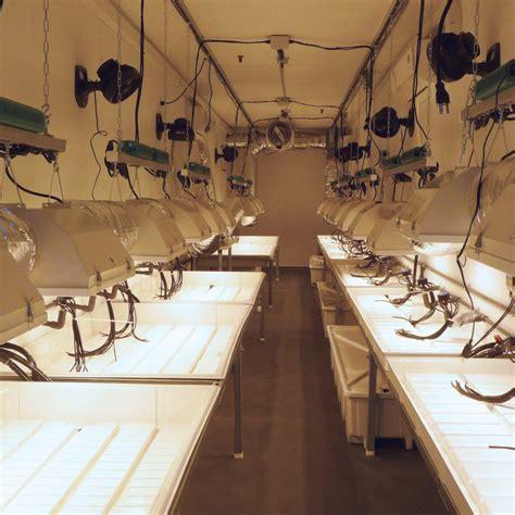 hydroponic grow room hydroponic grow room construction organica garden supply hydroponics