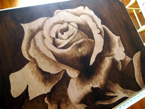 wood art stain shading with stain a video tutorial sawdust and embryos
