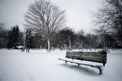 bench winter winter bench by marcus kihn
