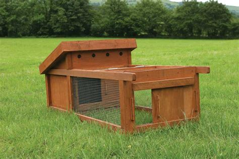 backyard chicken coop for sale raising backyard chickens animals grit magazine