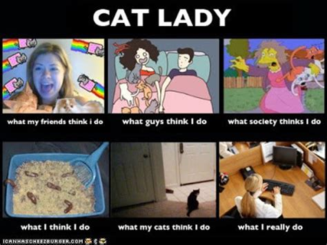 Funny Cat Lady Memes - nick s bytes t b i m on president s day