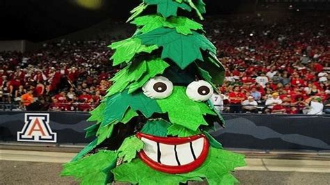 tree mascot the tree of stanford nbcsports sports
