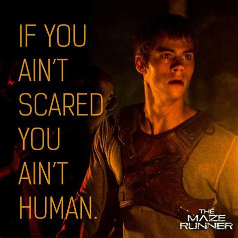 maze runner film newt newt maze runner movie quotes quotesgram