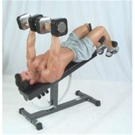 schwinn weight bench 1000 images about fitness on pinterest weight benches