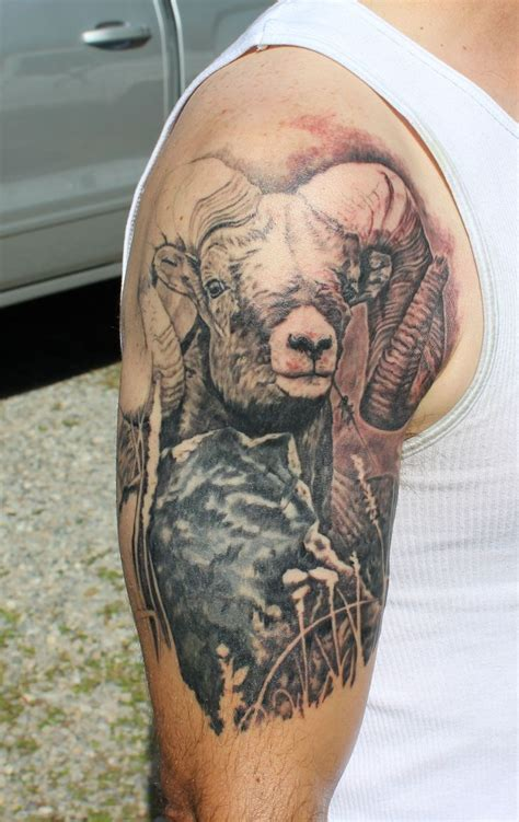 sheep tattoo designs best 25 sheep ideas on black sheep