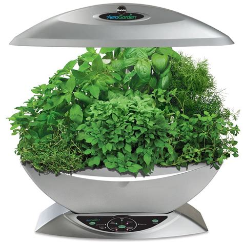 herb planter mini cube self watering herb planter indoor herbs herbs planting tips and gadgets