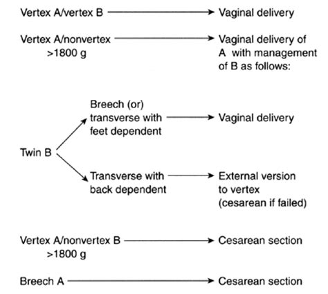 management of cesarean section volume 2 chapter 82 multiple gestation labor and delivery
