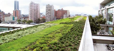 green roof urban climate roof zinco green roof systems