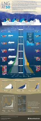 Largest Cruise Line infographic lng s golden jubilee world maritime news