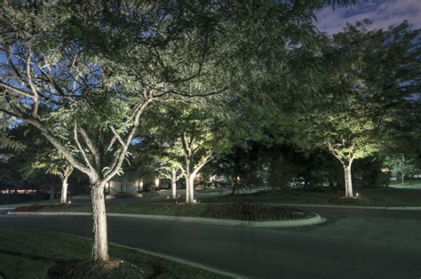 Landscape Lighting In Trees Tree Lighting Outdoor Lighting In Chicago Il Outdoor Accents