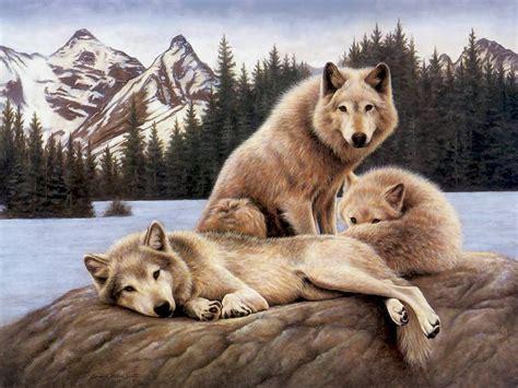 wolf s wolfs alpha and omega fan art 22891728 fanpop page 7